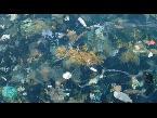 اليمن اليوم- العثور على جزر من القمامة في خليج تايلاند