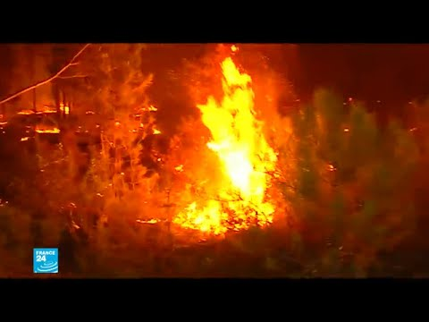 شاهد أوروبا تحترق مع ارتفاع درجات الحرارة مُسجلة أرقامًا فياسية