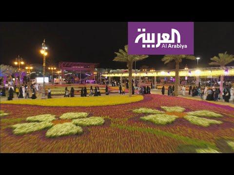 تبوك السعودية تتزيَّن بمليون زهرة