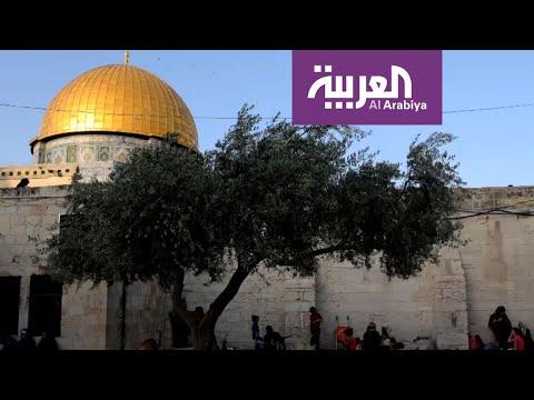 شاهد بنود مسربة من خطة الرئيس ترامب للسلام في الشرق الأوسط