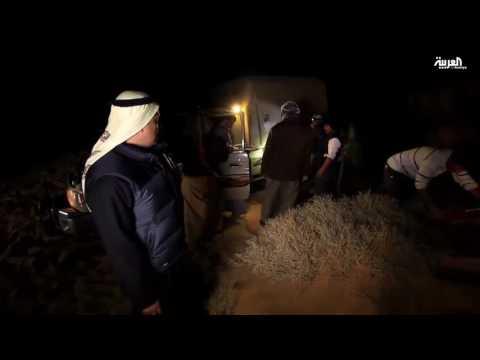 اليمن اليوم- بالفيديو  معاناة فريق على خطى العرب في الصحراء