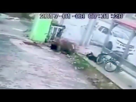 اليمن اليوم- شاهد فتاة تلقي حتفها بقسوة أثناء انتظار الحافلة