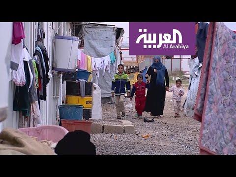 اليمن اليوم- أم مصطفى عبرت بأبنائها حقول الألغام والقناصة