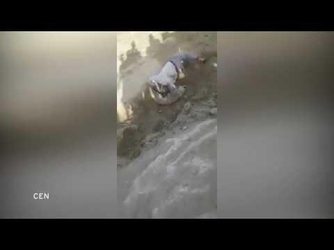 اليمن اليوم- شاهد فهد ينقض على حارس حديقة حاول إنقاذه