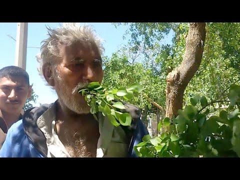 اليمن اليوم- شاهد مسن باكستاني يعيش على تناول أوراق الشجر والأخشاب