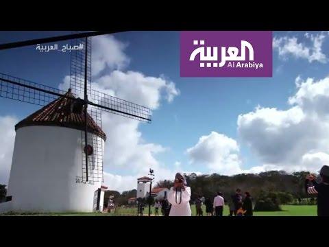 اليمن اليوم- شاهد جزيرة غيغو الكورية إحدى عجائب الدنيا السبعة