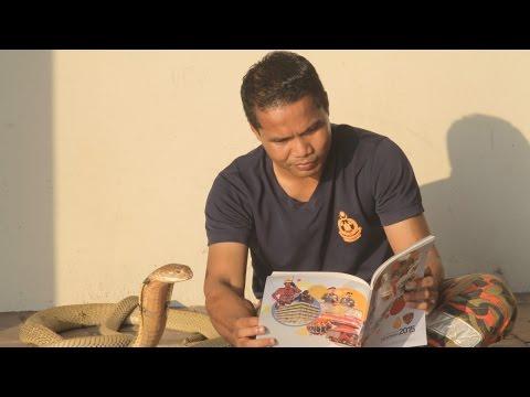 اليمن اليوم- مروّض ثعابين يحتفظ بكوبرا في منزله