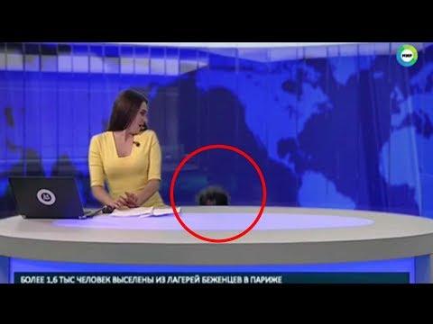 اليمن اليوم- شاهد كلب يفاجئ مذيعة أثناء تقديمها لنشرة الأخبار