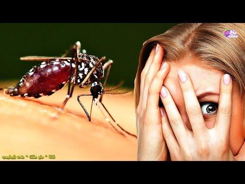 اليمن اليوم- شاهد  لماذا يلسع البعوض بعض الناس