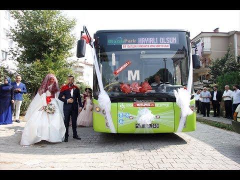 اليمن اليوم- عروسان يحتفلان بزفافهما داخل حافلة نقل عام