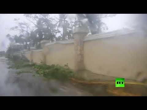 اليمن اليوم- شاهد إعصار ماريا يقلع الأشجار من جذورها
