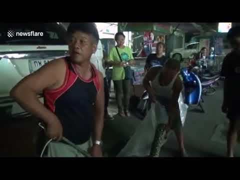 شاهد سيدة تعثر على ثعبان بالحمام في تايلاند