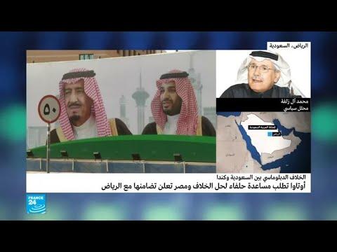 محلل سياسي يكشف سبب عدم اتخاذ السعودية خطوات مماثلة مع ألمانيا والسويد