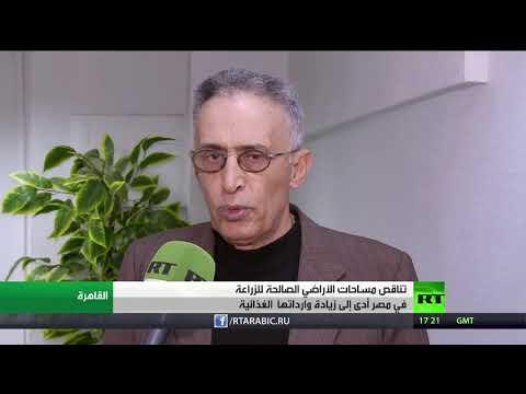 شاهد أكثر من 227 مليار جنيه واردات مصر الغذائية