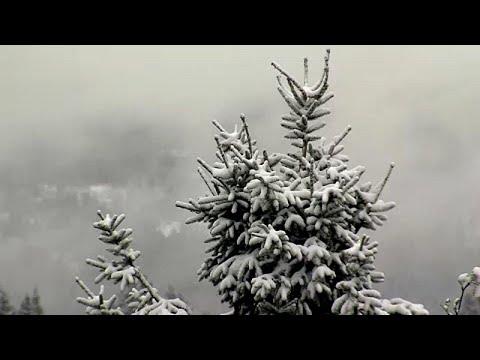 شاهد الثلوج تُغطي ألمانيا رغم اقتراب الصيف