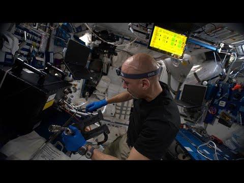 تطبيق ذكي للحمية الغذائية وعلاقة الجاذبية بالوقت في سلسلة الفضاء
