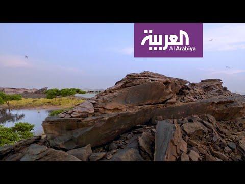 تاريخ وحقائق لنقوش أثرية منذ 8000 عام على الجزيرة العربية