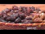 اليمن اليوم- بالفيديو انطلاق  معرض قطر الدولي للزراعة