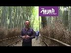 اليمن اليوم- شاهد المكان المفضل لنزهة نبلاء اليابان